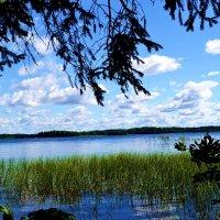 Валдайское озеро :: Юлия Семенова
