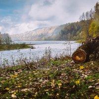 река Уса :: Pavel Rakhimberdiev