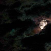 Осталось 1 до кровавой луны....   (Фото снято прямо с балкона в 22-13) :: Анатолий Клепешнёв