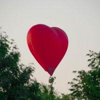сердце гор :: Svetlana AS