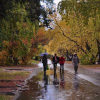Осень дождями ляжет, листьями заметет.. :: Оксана Пестова
