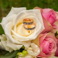 Wedding rings :: Asinka Photography