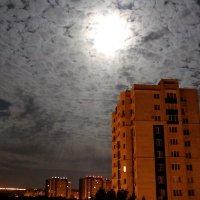 Светлая ночь опустилась над городом :: Татьяна Ломтева