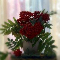 Осенние краски, осенние дни... Вновь гроздья рябины горят как огни... :: Наталья Соколова