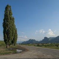 Вид на гору Шоан (КЧР) :: Евгений Khripp