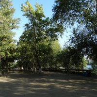 Природа и город...4 :: Тамара (st.tamara)