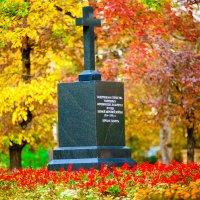Защитникам Отечества :: Юлия Верещагина