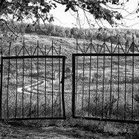 Путь к свободе. :: Копыткина Юлия