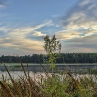 Сентябрьское утро у озера Спенглас :: Kliwo
