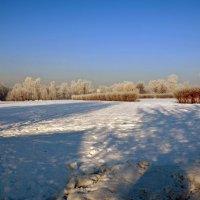 Зима. :: Oleg4618 Шутченко