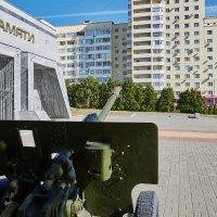 Чизовский плацдарм. :: валера36 .