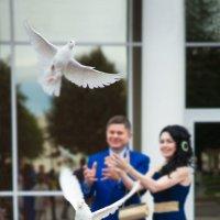 Голуби летят над нашим ЗАГСом... :: Алексей Мартынов