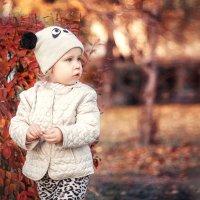Красно-жёлтая осень :: Александра Гилета