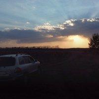 На закате.. :: Алёна Сергеевна