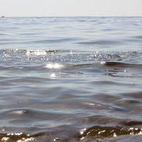 Температура воды 25 градусов... :: Marina K