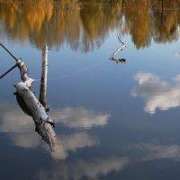 Плывущие в облаках :: Наталия Григорьева