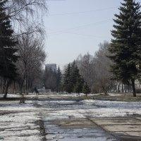весна идет :: Евгений Вяткин