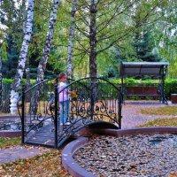 Осенняя мелодия :: Ирина Тазеева