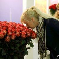 красота и запах роз :: Олег Лукьянов