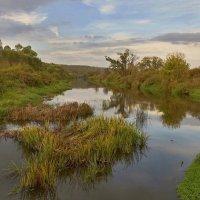 Река Упа :: Константин