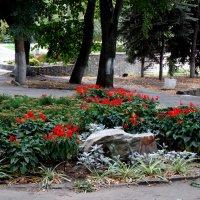 В осеннем парке...4 :: Тамара (st.tamara)