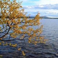 Осень у озера :: Ольга