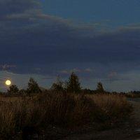 А вот и ночь почти пришла. :: Павлова Татьяна Павлова