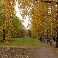 Осенний этюд.3 :: Александр Атаулин