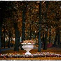 В парке. :: Александр Гавриленко