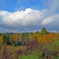 Осень :: Александр Смирнов
