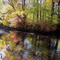 Фантазия на тему осень :: ирина Пронина