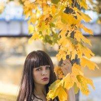 Ярославская осень :: Женя Рыжов