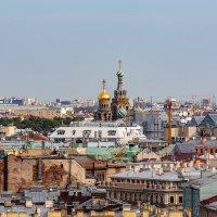 На крышах Санкт-Петербурга (4) :: Николай Николенко