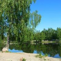 На озере. :: Александр Атаулин