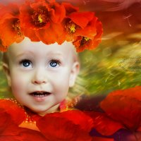 Настроение цвета мака :: Anastasiya Ageeva