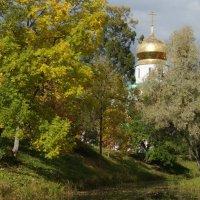 Осень пришла :: Сергей