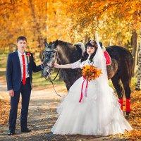 с лошадкой :: Ольга Челышева
