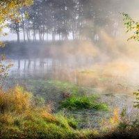 Сентябрьское утро золотого тумана... :: Андрей Войцехов