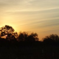 Закат в октябре... :: Тамара (st.tamara)