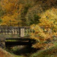 Осенние грёзы.... :: Tatiana Markova
