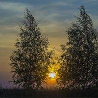 Уж небо осенью дышало :: Владимир Максимов