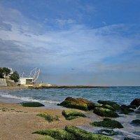 песчаный берег, легкий бриз, над головой большое небо... :: Людмила