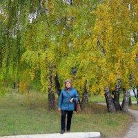 Золото осени. :: Мила Бовкун