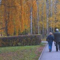 Осенний парк. :: Александр Атаулин