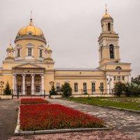 Свято-Троицкий Кафедральный Собор :: Михаил Вандич