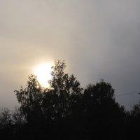 Легкое солнечное затмение :: Tatyana Kuchina
