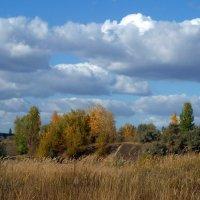 Осень. :: Чария Зоя