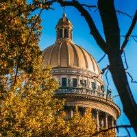 Осень в Питере :: Виктор Седов