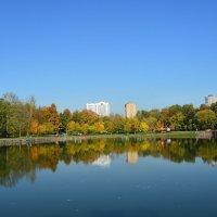 Осень в городе :: Арина