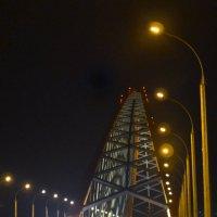 Бугринский мост :: cfysx